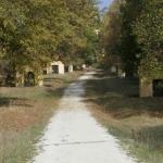 Kapellenweg zur Wallfahrtskirche
